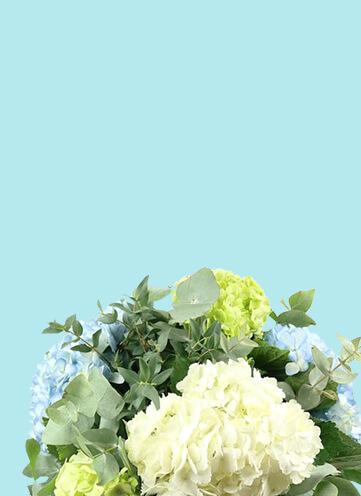 Same day Flowers Islington